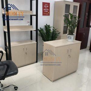 Tủ tài liệu thấp 2 cánh - TVPMY05
